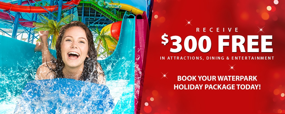 Holiday Waterpark Packages